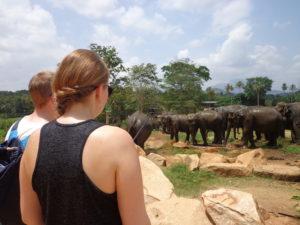 Sri Lanka persönlich vom Experten Zu erkennen – ferien.lk