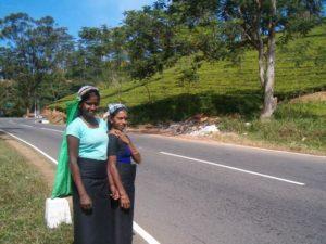 Aktivreise Sri lnaka reiseberischt www.urlaub.lk