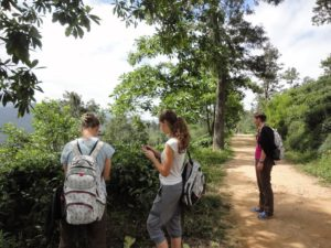 http://www.urlaub.lk/sri-lanka-reisetipps-vom-experten-sri-lanka/