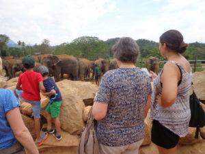 Herzlich willkommen auf Sri Lanka