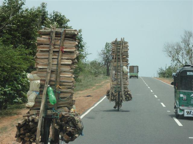 Sri Lanka Sehenswürdigkeiten unvergessliche Highlights www.ferien.lk