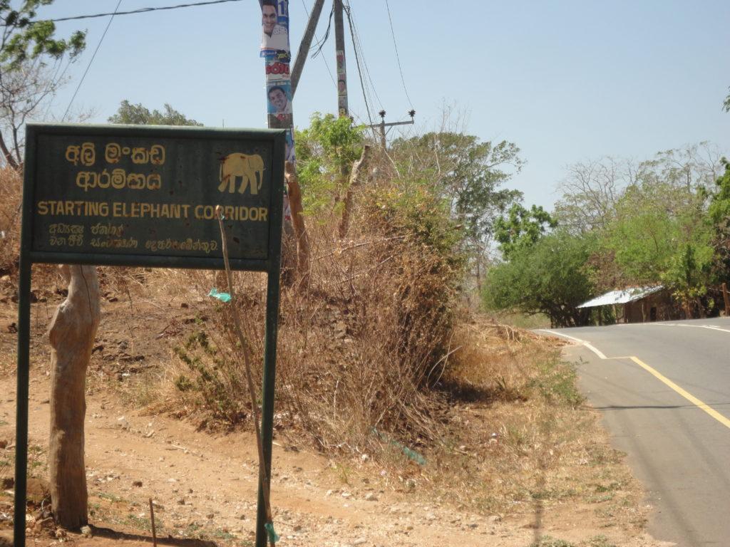 Sri Lanka Reise  Erfahrungen  über 25 jahren www.ferien.lk
