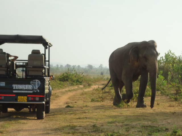Sri Lanka Reisetipps & Kosten www.ferien.lk