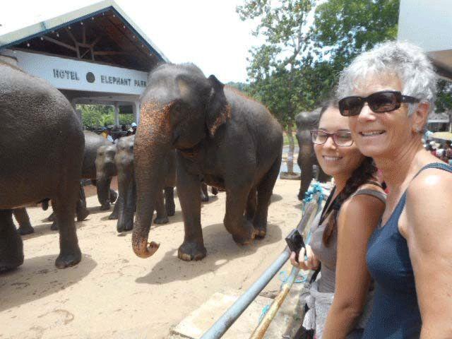 Sri Lanka Urlaub 2020 günstig buchen www.ferien.lk