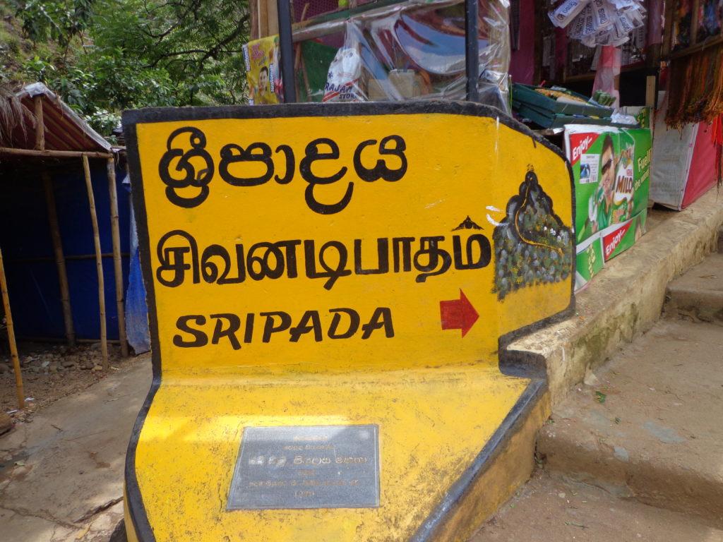 ,Minneriya Sigiriya Anuradhapura,Mihintale, Hatton, Nanu Oya,Polonnaruwa, Aukana,Kandy,Matale,   Sri Lanka Reise  Erfahrungen  über 25 jahren www.ferien.lk
