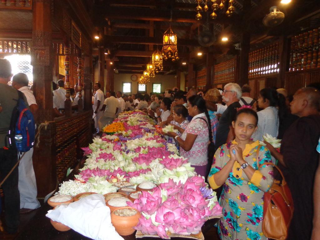 Rangit Aktivreisen - Ihr Sri Lanka Spezialist www.ferien.lk