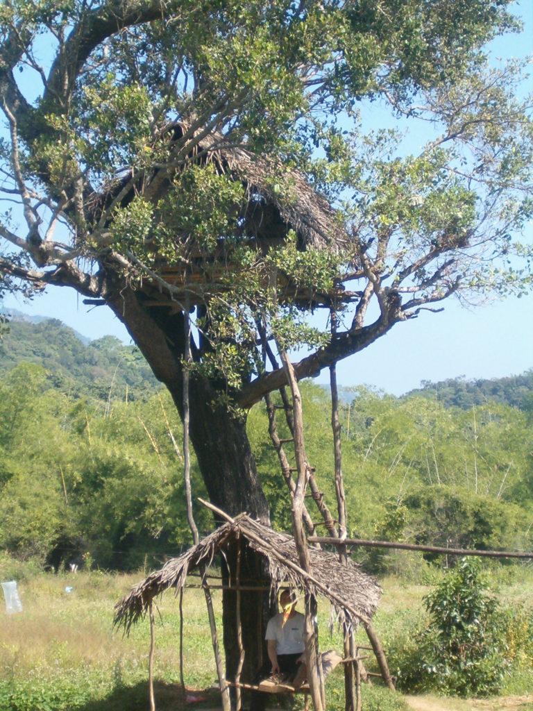Special Offers –  SriLankan Holidays www.ferien.lk      Sigiriya, Kandy, Ella, Yala Nationalpark-Udawalawa Jeep Safari, Galle,  Zugfahrt Hochgebirge,Ella,